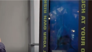 Sharks attack interactive digital signage