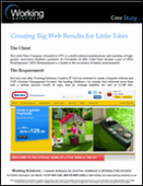 Creating Big Web Results for Little Tikes