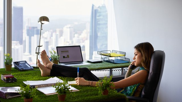 Going green: Five office design trends to watch this year