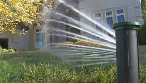 Smart sprinklers grow green grass and save water