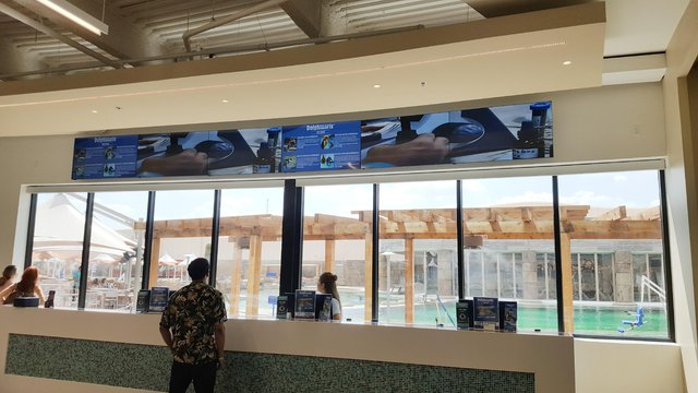 ClearOne installs video wall at dolphin swimming center