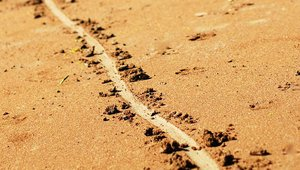 Is it time to draw a line in the sand for your underperformers?