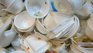 How embracing Styrofoam bans will help your brand thrive