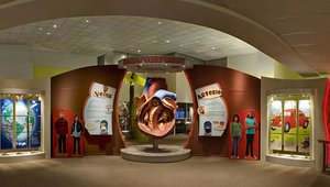 Digital signage and kiosks get to the heart of things for Halle Heart Children's Museum