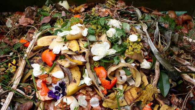 5 things you can learn from your restaurant's dumpster