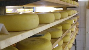 Cheese prices rise sharply week over week