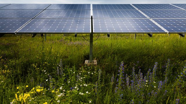 Retail Home Solar Service Launches in 8 States