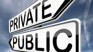 Top execs discuss perks and pitfalls of private vs public ownership