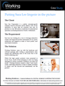 Working Solutions Case Study - Putting Sara Lee lingerie in the picture