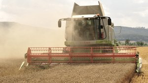 Wheat prices remain solidly below $7