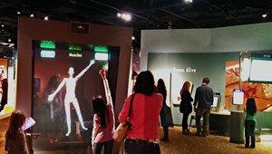 Digital signage lights up tourism