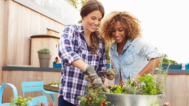 Five easy things you can do to make your home more sustainable