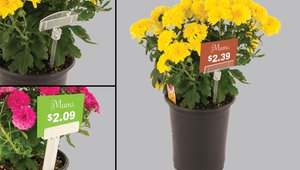 Add Signs to Floral and Plant Displays with New Pin Stick Sign Holder