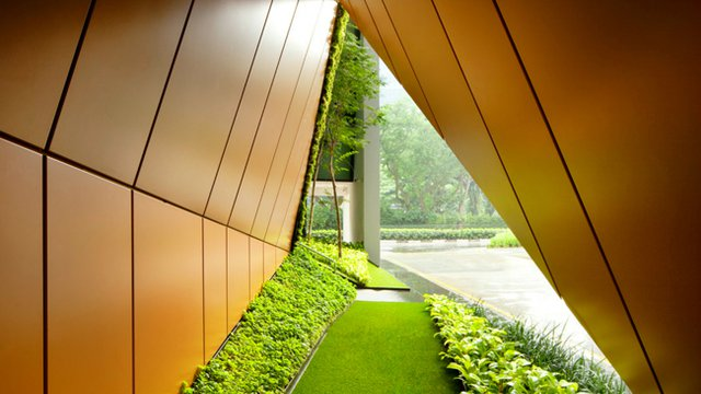 Firm revamps Singapore office with lush 'pocket parks'
