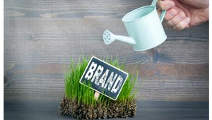 Reimagining the power of your brand