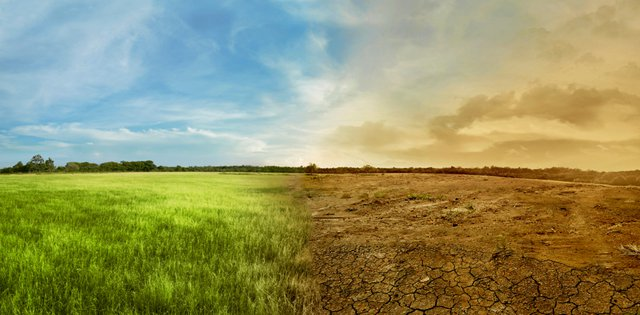 How to save money, protect environment during drought