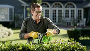 Low-cost Landscaping Can Boost Home Values