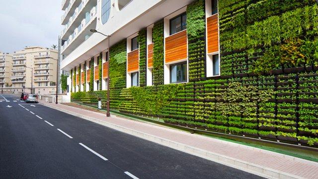 Vertical gardens greening European cities