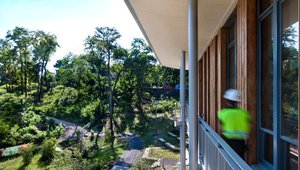 An elevated view of Frick Park from the Environmental Center balcony. Photo by Jeremy Marshall.