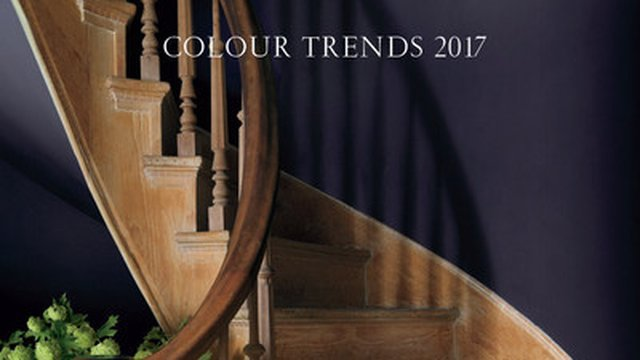 'Shadow' Named 2017 Color of the Year