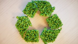 The case for sustainability: 4 considerations for restaurants