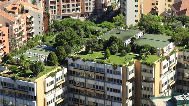 Denver latest city to require green roofs on big new for Giardino 54 nyc