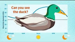 Duck curve addresses over-generation of solar energy