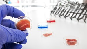 FDA holds July 12 public meeting on foods made with animal cell technology