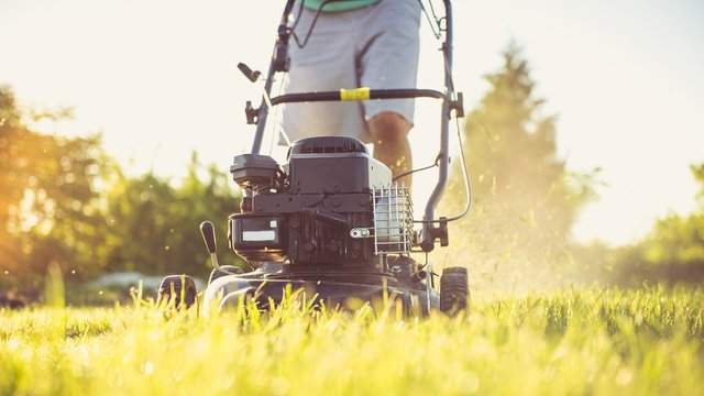 Tips for making the most of the living landscape at your new home