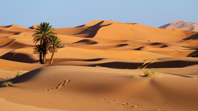 An oasis in the cash desert: How UK FIs can reinvent the ATM channel