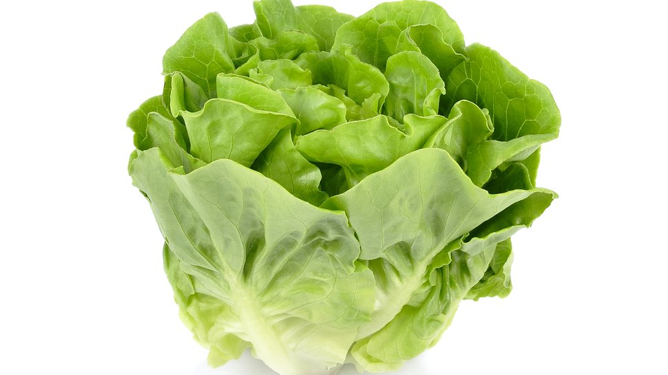Wendy's pledges to 'lettuce' eat healthfully
