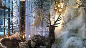 The 2012 holiday shopping windows of New York