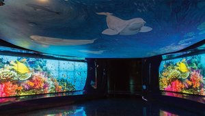 Digital signage keeps visitors engaged during Georgia Aquarium renovation