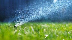 12 tipsfor making properties more water efficient