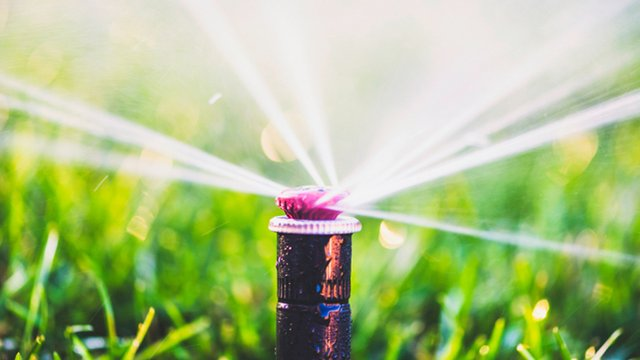 Companies partner to bring commercial Internet of Things to smart irrigation