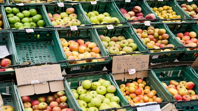 A beautiful find: How 2 grocers stock relevance through sustainability
