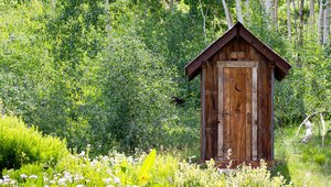 What does your old toilet say about you?