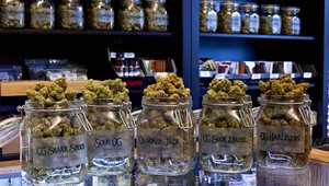 Cannabis dispensaries, digital signage form the ideal partnership