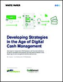 Developing Strategies in the Age of Digital Cash Management